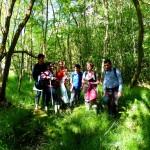 W4 - Betula-Molinia wet woodland