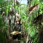 Botany fieldwork, Belize 2008