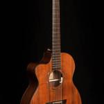 Lichty Guitar