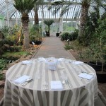 A perk of working at Kew, dinner in the Temperate House
