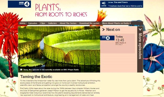 roots to riches #6 taming the exotic