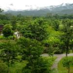 Xishuangbanna Tropical Botanic Garden