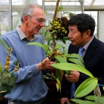 Nigel Brown talks Orchidology with Sophie's boss, Chen Jin from Xishuangbanna Botanical Garden