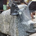 A granite pig