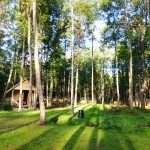 Forest camp in Estonia near Parnu