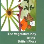 The Veg Key