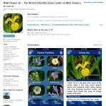 Wildflower ID