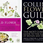 Wildflower guides