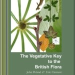 The veg key