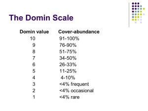 NVC domin scale