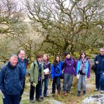 eXtreme botanists at Wistmans Wood