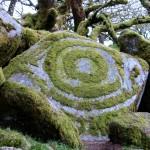 Moss sculpture - art or botanical vandalism?!