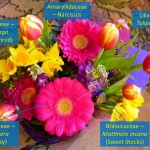 bouquet answers