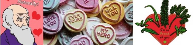 valentines image