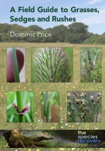 dom grasses sedges rushes