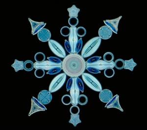 diatomsb-1024x905