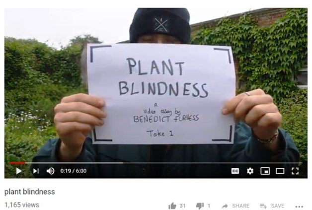 Plant Blindness  A Video Essay By Benedict Furness  Dr M Goes Wild Dr M Says The Critical Concept Of Plant Blindness Has Featured On  Drmgoeswildcom Before For Example Dawn Saunders Post In The Botanical  Selfie Series  Holiday Woodworking Projects also Arts And Crafts Diy Projects Good Woodworking Projects